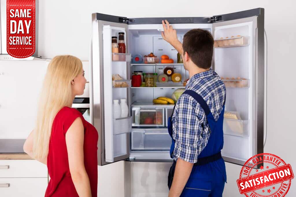 prof fridge repair