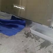 Leaking Dishwasher