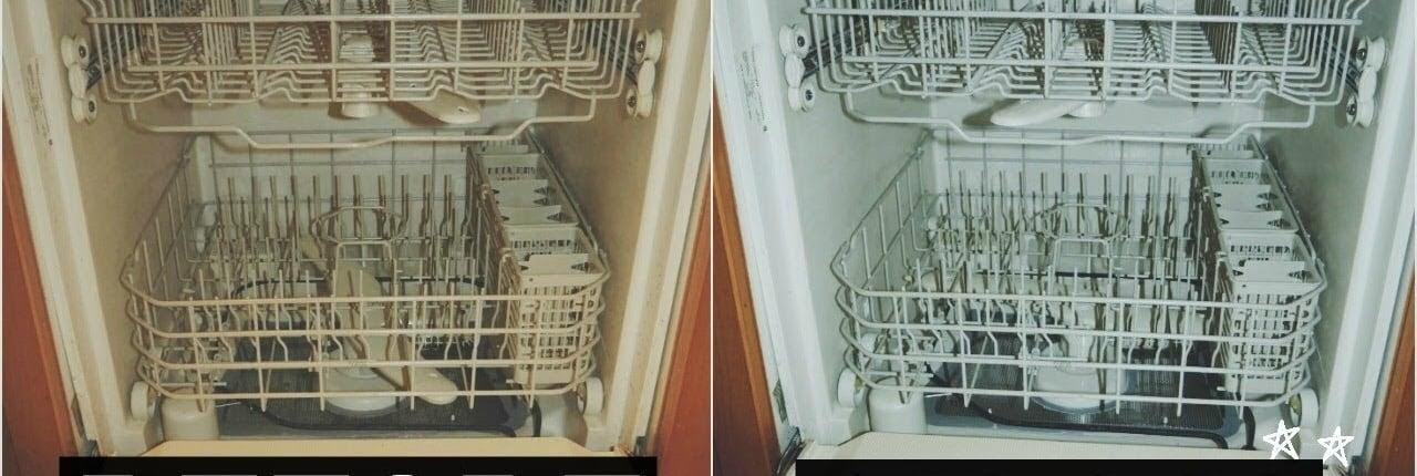 a moldy dishwasher